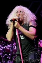 Twisted Sister 12
